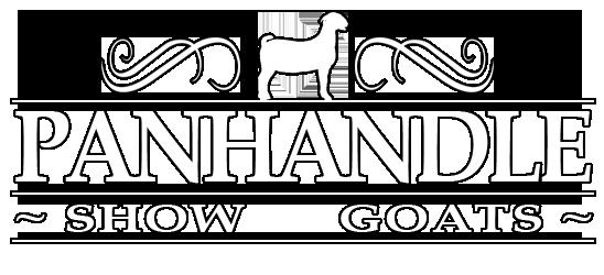 Panhandle Show Goats